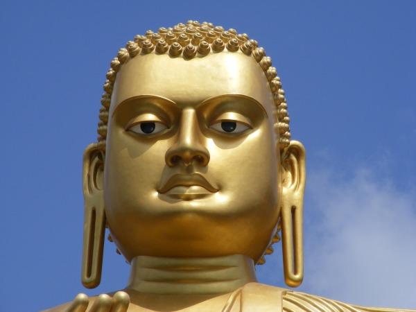 Head of Buddha Sri Lanka
